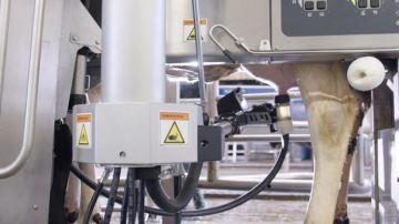 C. Legret (50) : «Plus besoin de faire d'échographies grâce au VMS V310»