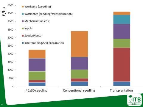 Charges en fonction du type d'implantation des betteraves sucrières en bio
