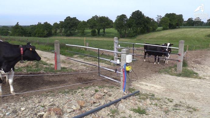 Barrière électrique télécommandée pour bovins