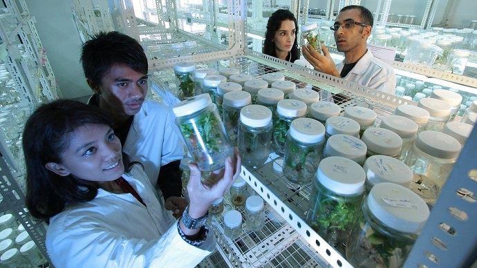etudiants en agriculture dans un laboratoire