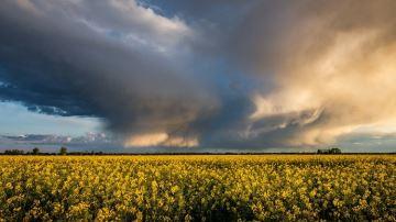 Quel temps pour vos travaux des champs en avril et mai 2020?