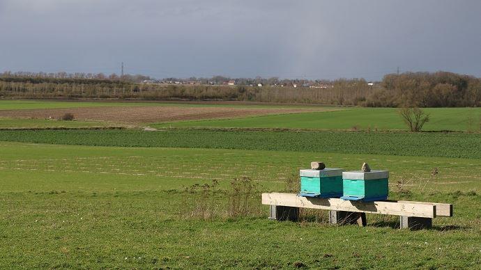 Site de la Ferme pilote en agro-écologie performante du groupe Carré