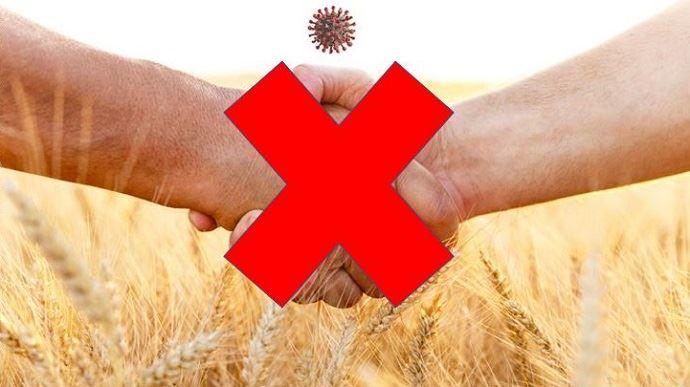 poignee de mains barrees devant un champ de ble et coronavirus