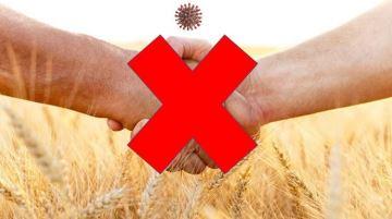 Coronavirus: de nouvelles barrières pour la transmission des fermes