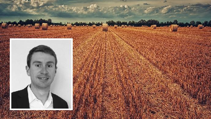 Matthieu Beyaert - Champ du blé