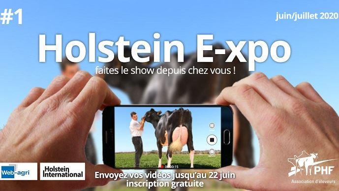 Concours Holstein E-xpo