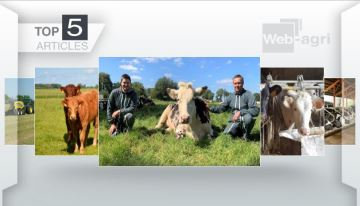 Les articles sur l'élevage laitier à l'honneur cette semaine sur Web-agri