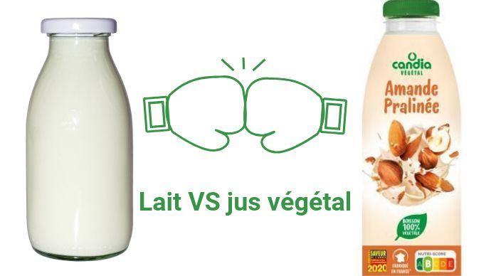 Sodiaal sort un nouveau produit - «Candia végétal», sans lait... De quoi faire réagir les éleveurs, en particulier certains de ses coopérateurs.