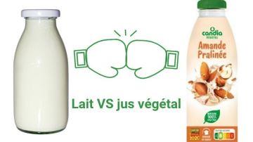 La boisson végétale de Sodiaal, saveur un peu amère pour certains coopérateurs