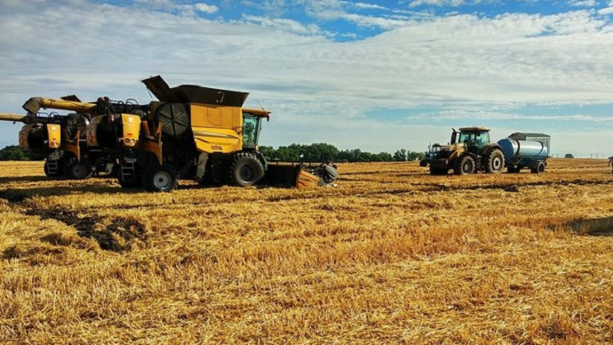 En Ukraine, des stocks de blé au plus bas depuis dix ans