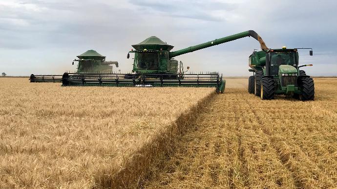La moisson progresse en Ukraine:  72% des surfaces de blé sont récoltées