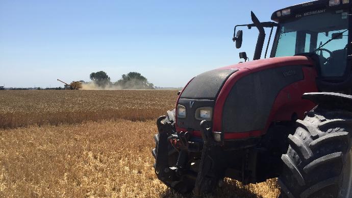 La récolte du blé se termine en France