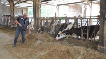Au Gaec l'Abbaye (35), près de la moitié des vaches laitières sont en location