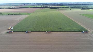 Défilé de tracteurs pour l'ensilage de maïs dans la Somme (80)