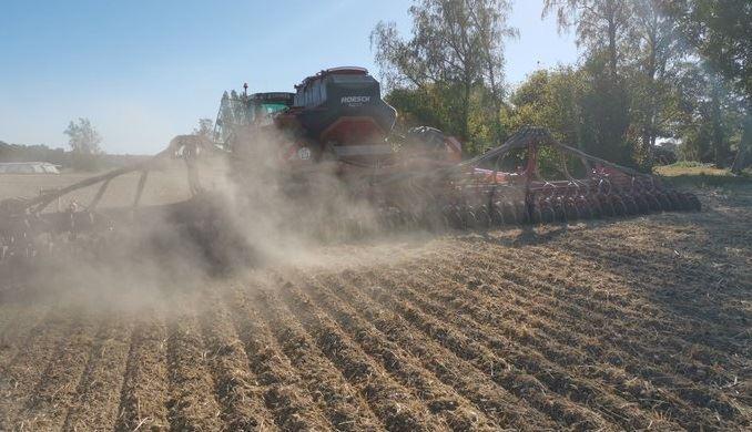 semis de colza dans le sec