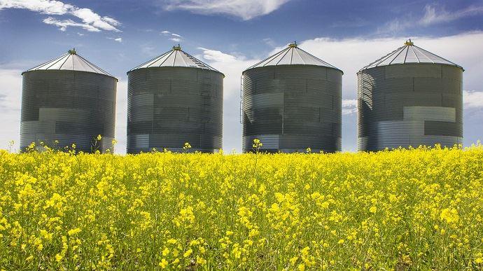 champ de colza et silos