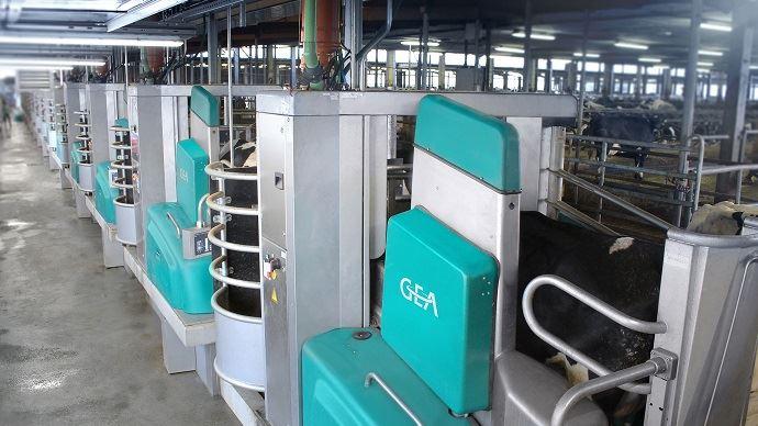 16 robots de traite GEA installés dans une ferme laitière en Allemagne