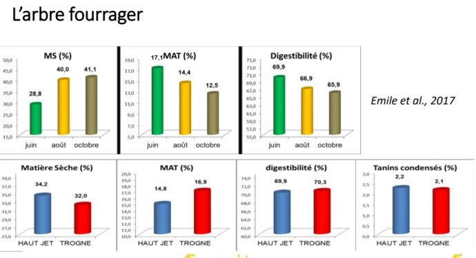 Arbre fourrager: MS, MAT et digestibilité en juin, août et octobre