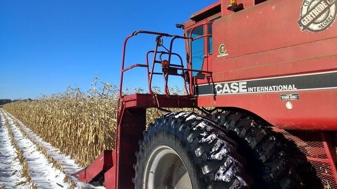 Les signaux positifs sur l'offre de céréales contrastent avec les inquiétudes sur la demande.