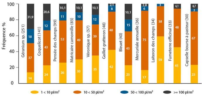 Fréquence des densités des principales adventices du colza