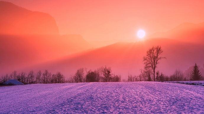 Des températures trop élevées apportent un risque sur les blés russes