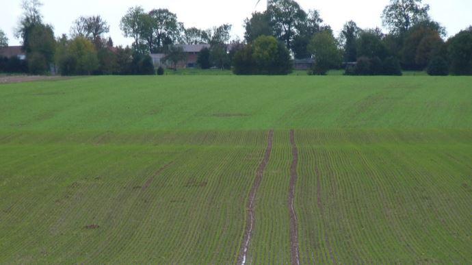 Deux propositions de loi pour mieux encadrer le foncier agricole sont dans les tuyaux.