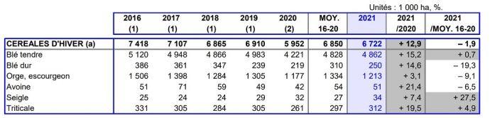 Estimations des surfaces de céréales d'hiver au 1er février 2021