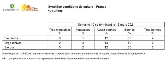 Synthèse conditions de culture au 15 mars 2021
