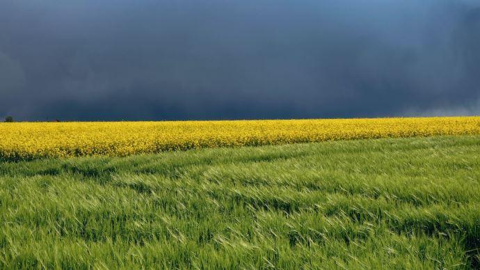 champs orage