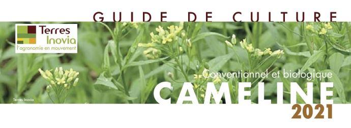 Guide de culture cameline 2021