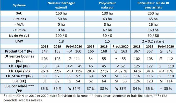 Résultats économiques 2020 des élevages bovin viande du Grand Est