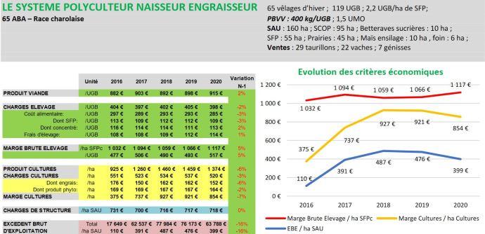 Système polyculteur naisseur engraisseur bovin viande dans les Hauts-de-France