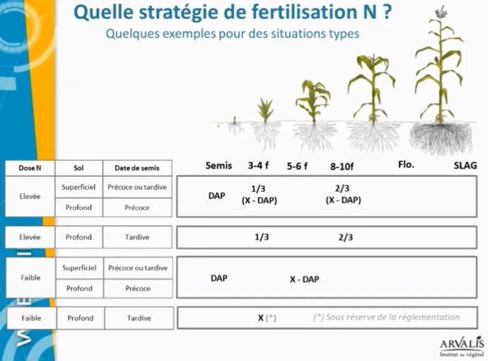 Stratégie fertilisation N