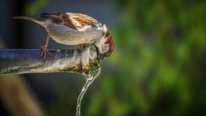La qualité de l'eau en France a progressé ces dernières années.
