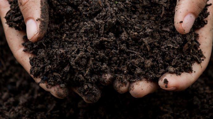 Le programme de rémunération de Soil Capital permet à l'agriculteur de gagner minimum 27,5€ par tonne de carbone stockée ou évitée.