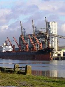 L'Egypte renforce ses critères qualitatifs à l'importation