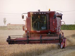 « Le blé français est le moins cher du Monde » (X. Rousselin – FranceAgriMer)