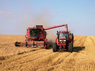 Michel Portier : « Des fondamentaux qui restent lourds sur le blé »