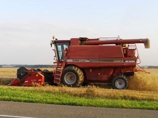 De belles perspectives dans l'Union pour le blé