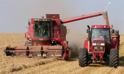 Les prix du blé continuent de s'envoler