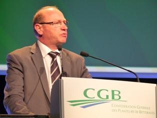 La betterave face au règlement sucre post-2014