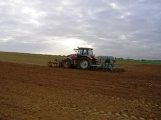 Selon le Cic, la production mondiale de blé estimée à 670 millions de tonnes