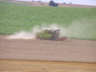 Semaine volatile pour le maïs, le blé et le soja