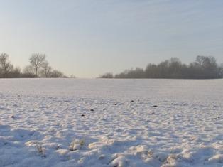 Conditions météo à l'aube des semis de printemps dans l'hémisphère nord