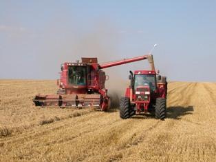 Nouvelles hausses des prix produits agricoles mais surtout de l'énergie et de l'aliment