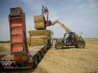 900.000 tonnes de paille contractualisées selon la Fnsea et JA