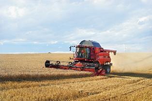 Hausse des prix du maïs et du blé en prévision d'une demande forte