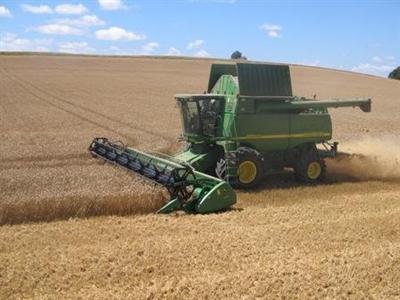 Estimée à 32 Mt pour le blé en 2011, FranceAgriMer revoit à la hausse ses prévisions de récoltes