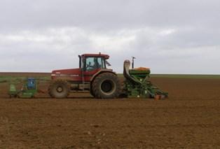 Conditions sèches sur le blé argentin