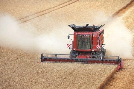 Maïs et blé reculent face à la météo, le soja résiste